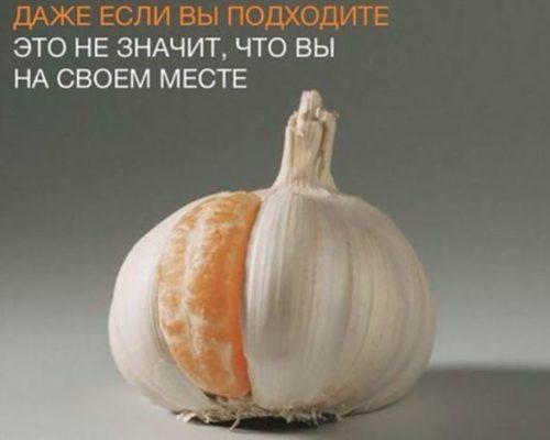 современные цитаты