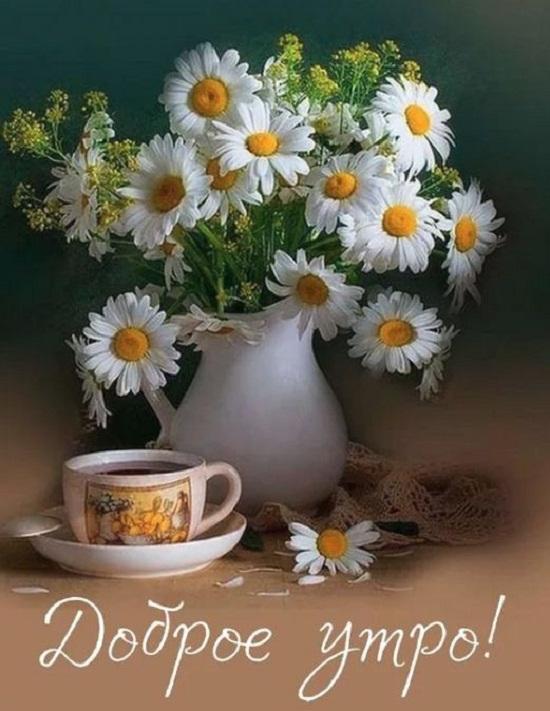 красивые пожелания утром