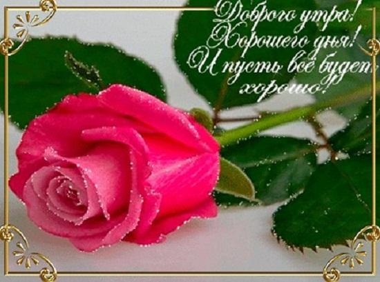 пожелания доброго утра и хорошего дня в стихах