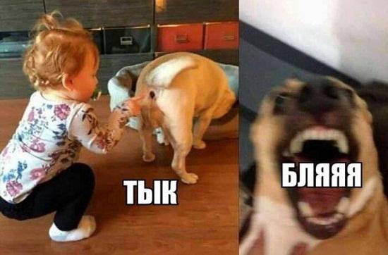 смешные картинки с детьми
