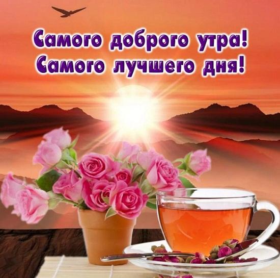 Прикольные пожелания доброго утра