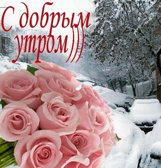 открытки доброе утро хорошего дня
