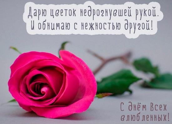 Прикольные картини на День Святого Валентина