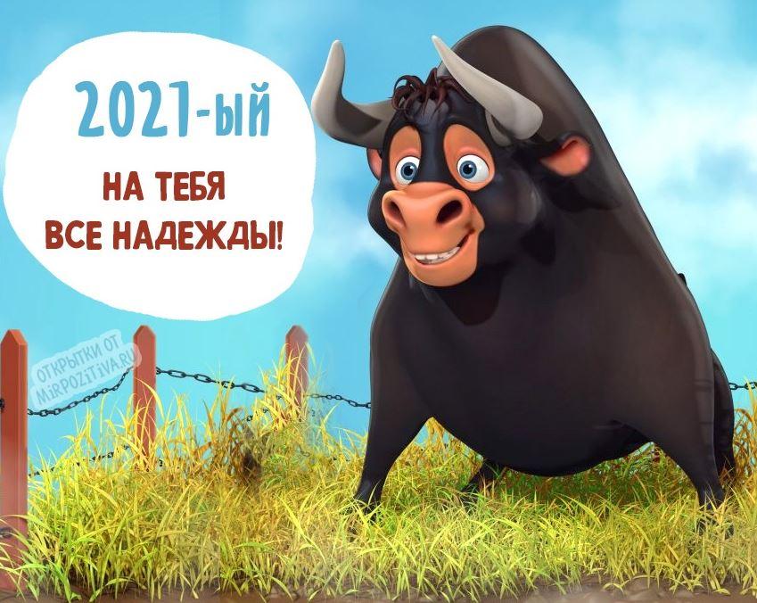 поздравления с новым годом б ко (3)