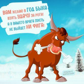 поздравления с новым годом б ко (4)
