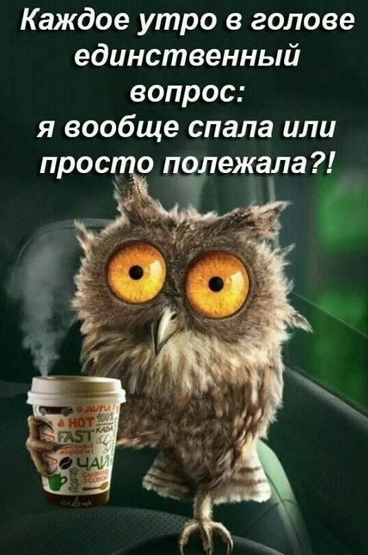 доброе утро 7